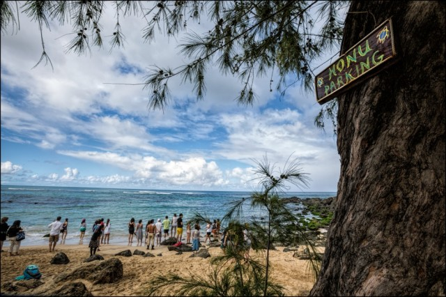 Laniakea Beach on Oahu's North Shore where visitors watch for turtles. 12.18.13 ©PF Bentley/Civil Beat