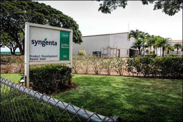Syngenta headquarters on Kauai. 3.23.14 Photo by Nick Grube/Civil Beat