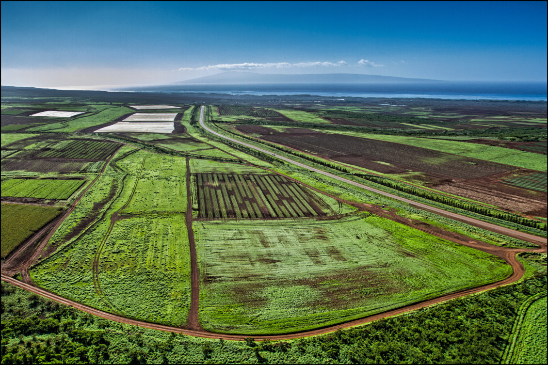 Monsanto fields  Molokai