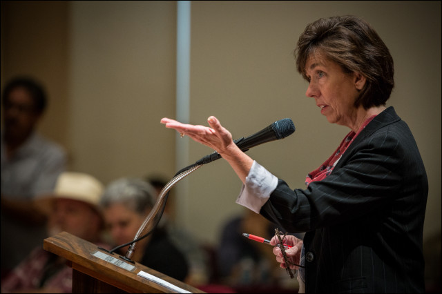 Pamela Witty-Oakland, director of the Department of Community Services answers questions from the Honolulu City Council on June 4, 2014.