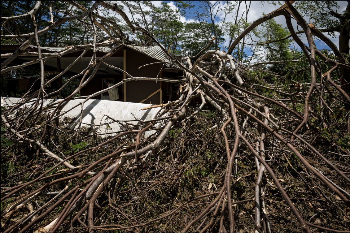This Hawaiian Beaches home was particularly hard hit, but a striking number of large trees caused problems throughout the area.