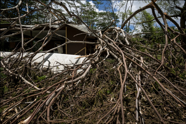 Hurricane Iselle damage to house in Puna District of Hawaii Island.