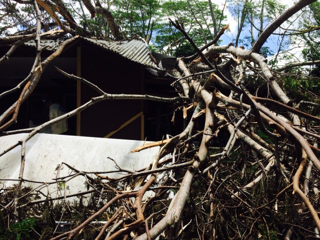 A tree did significant damage to this structure in the Hawaiian Beaches area of Puna.