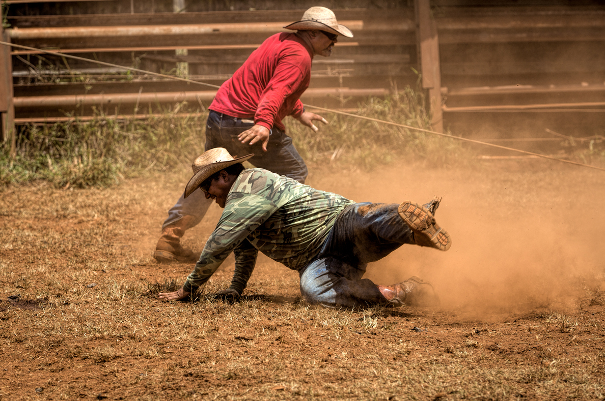 A cowboy hits the ground as the calf scrambles to get free.
