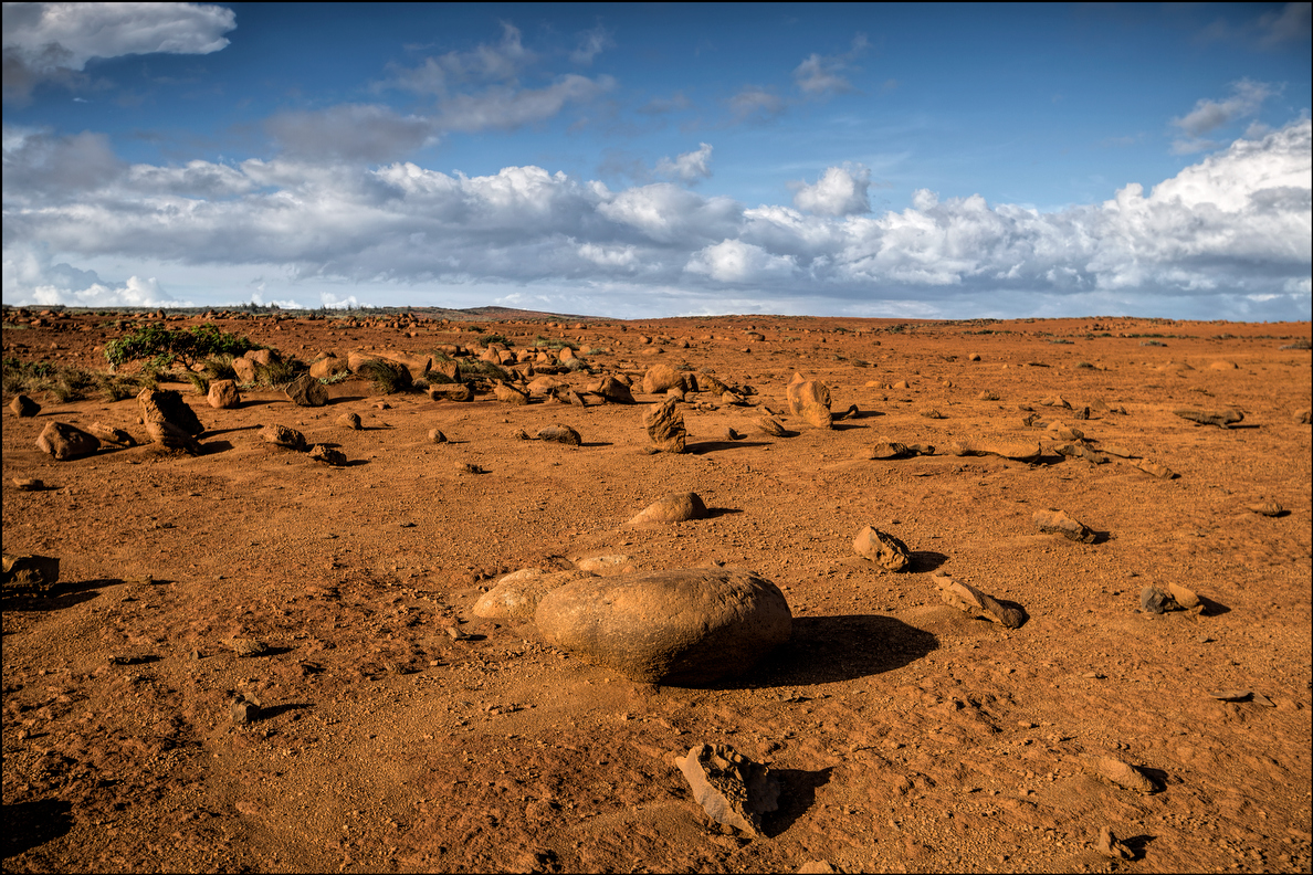 A scene which looks like Mars in the Kaneloa area plateau of Kahoolawe where hardpan is the norm. 9.29.14
