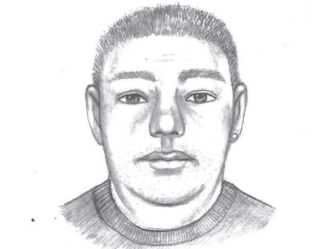 pukalani maui abduction sketch suspect