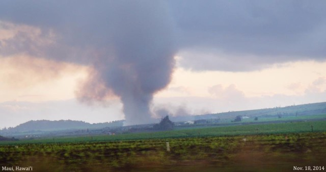 Hawaiian Commercial & Sugar Co. burns cane in Haliimaile, Maui.
