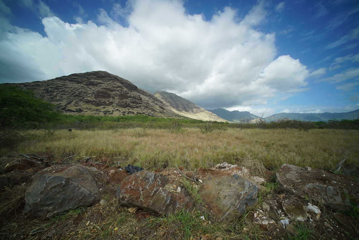 Looking mauka or mountain direction of Ala Akau Street in Waianae site of future solar farm. 12 feb 2015. photograph Cory Lum/Civil Beat