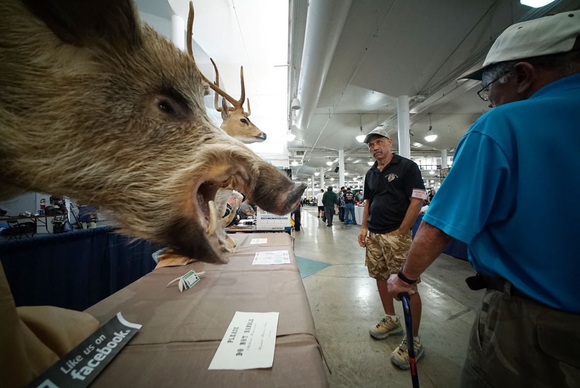 Oahu Taxidermy Service's display at the gun show included a large stuffed boar.