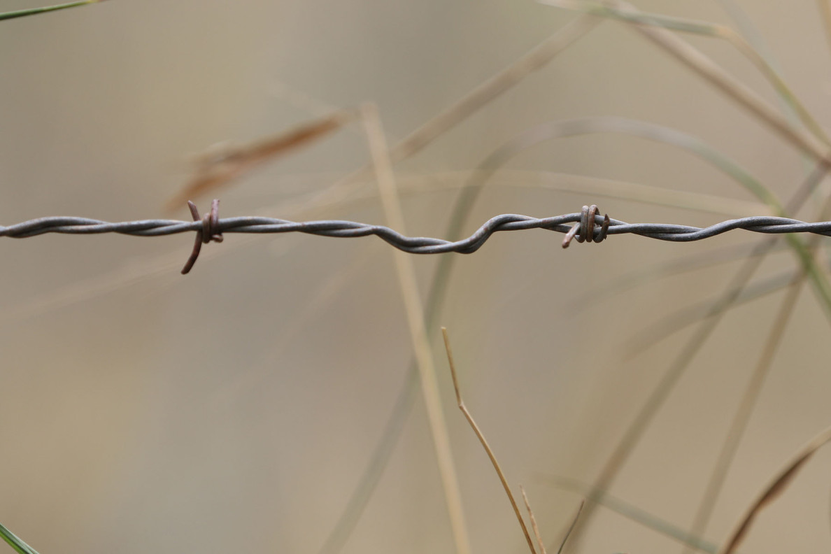 More than 4,000 prisoners of war and 400 civilians of Japanese descent were held behind barbed wire and block walls.