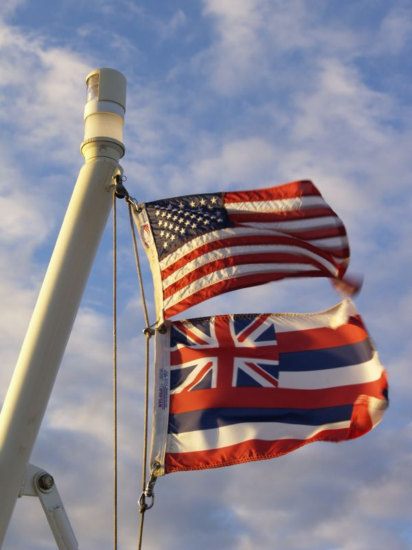 American and Hawaiian flags