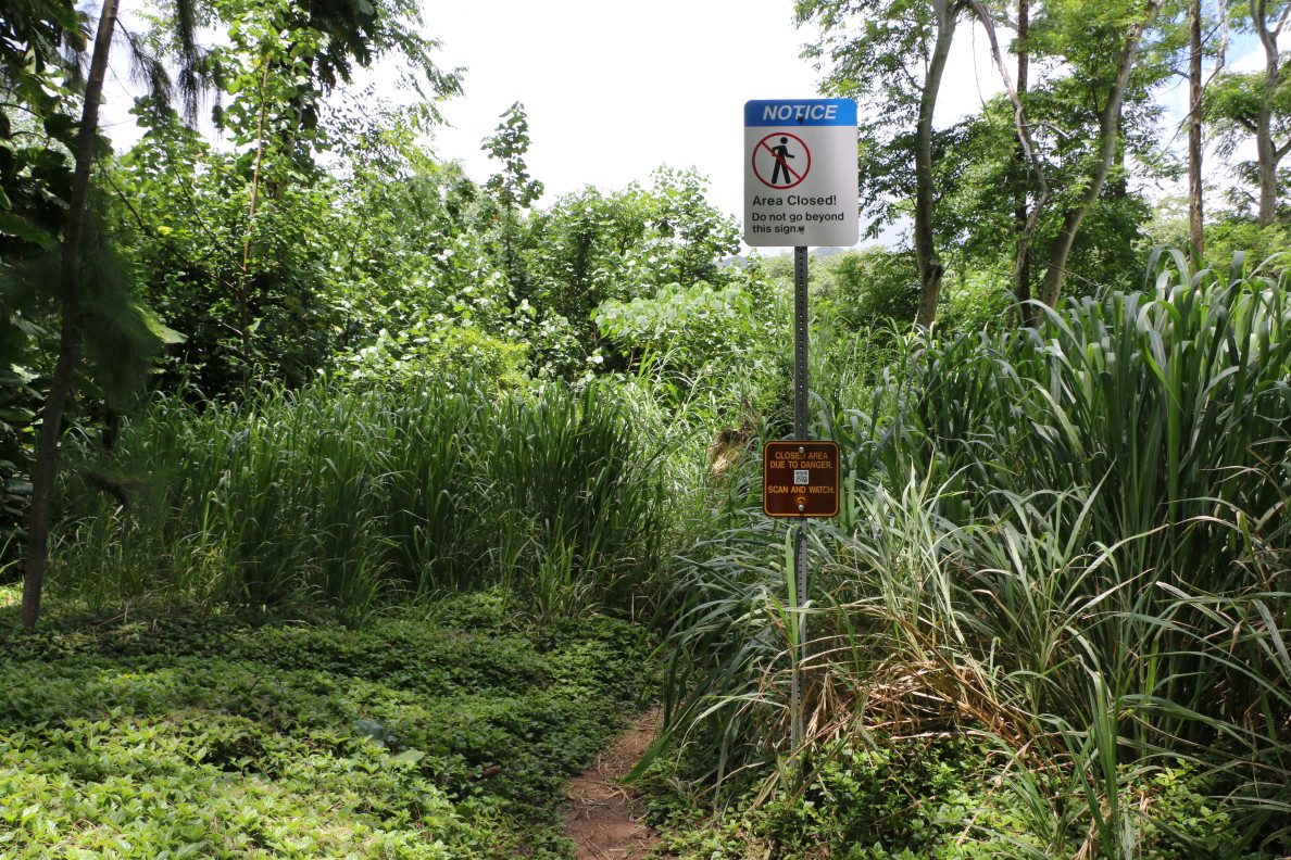 Sacred Falls Trail