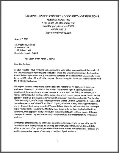Aaron Torres expert witness report