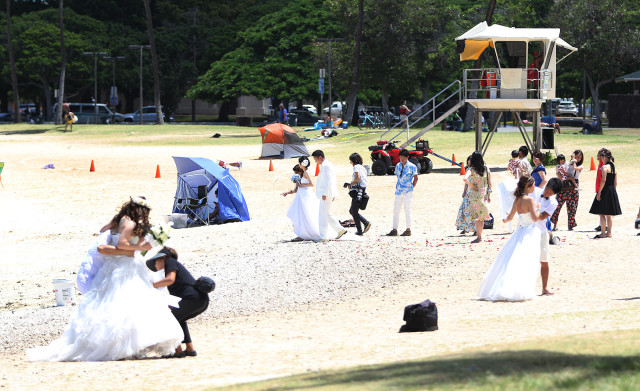 Couples enjoy their wedding photographs along Ala Moana Beach park, Magic Island side.  15 july 2015. photograph Cory Lum/Civil Beat