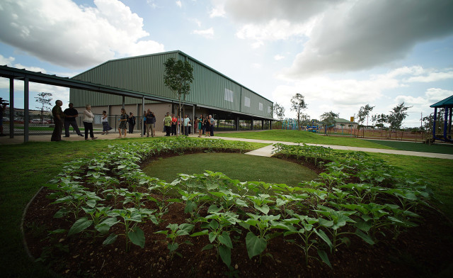 Sunflowers planted at Hookele Elementary School on tour of the new campus. 21 july 2015. photograph Cory Lum/Civil Beat