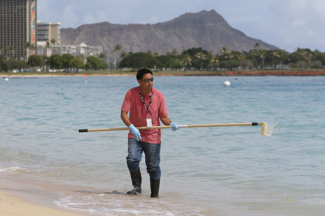 Scott Murakawa from the Department of Heath, Clean Water division uses the pole sampler at Ala Moana Beach. 25 aug 2015. photograph by Cory Lum/Civil Beat