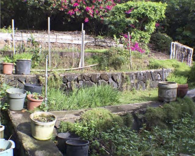 Mitchell property encroachment