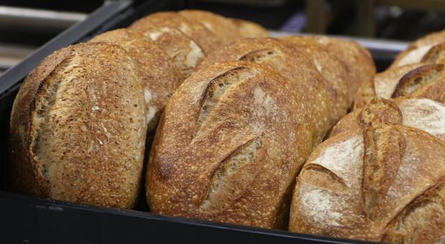 La Tour Bakehouse organic bread. 4 oct 2015. photograph Cory Lum/Civil Beat