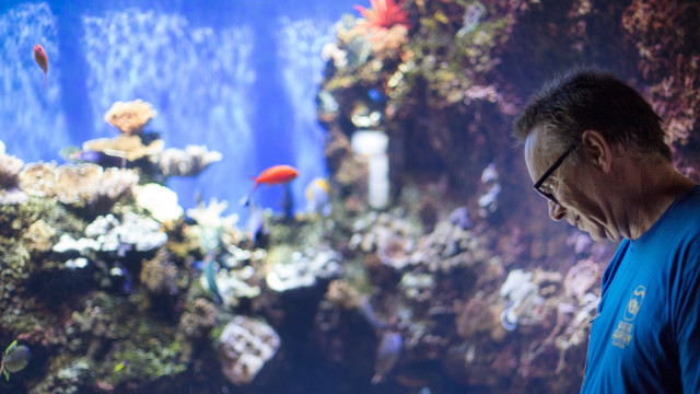 Robert Binnie spends many afternoons volunteering as an educator at the Waikiki Aquarium.
