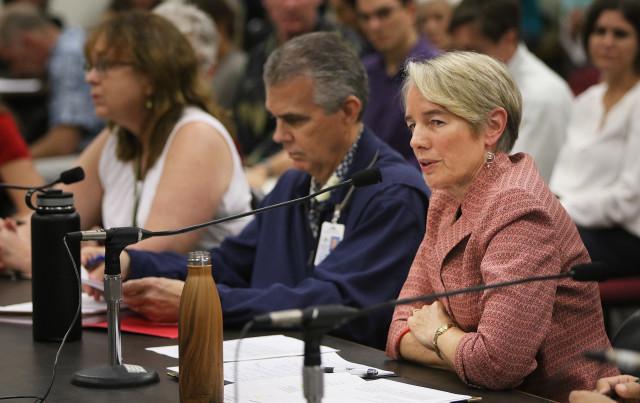 Marijuana dispensary hearing Dr. Virginia Pressler Director Dept of Health. 29 dec 2015. photograph Cory Lum/Civil Beat