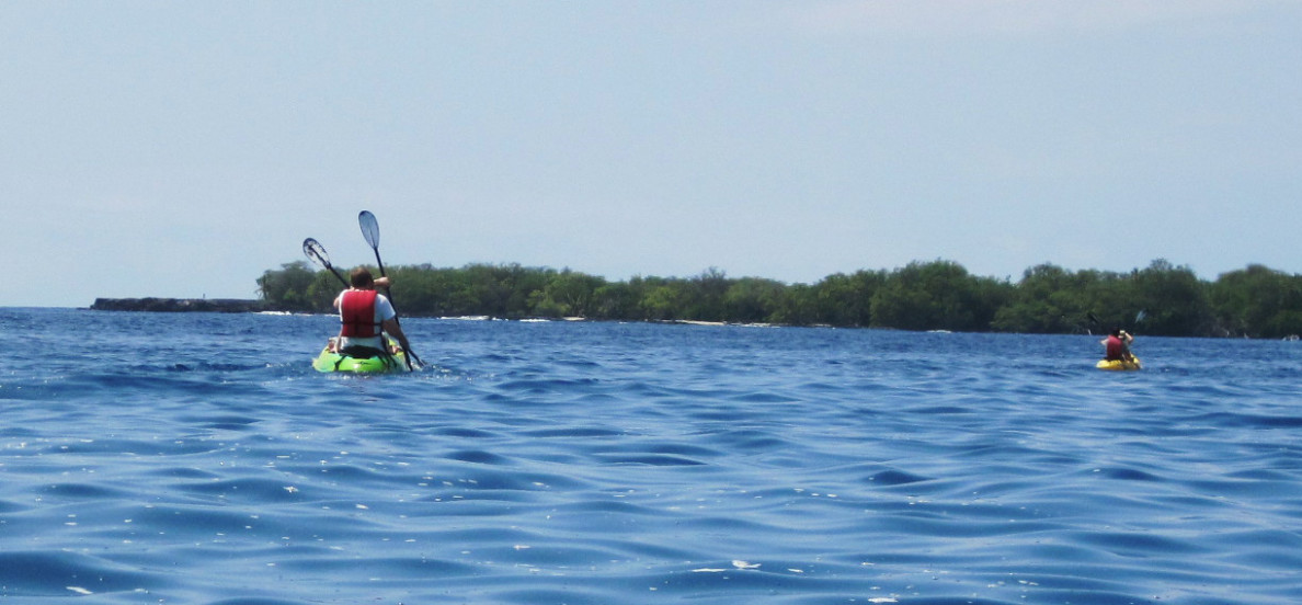 Kayakers paddle in Kealakekua Bay.