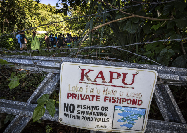 Students walk into fishpond area near the Ka 'Umeke Ka'eo charter school in Hilo HI.