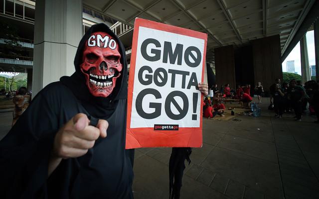 Legislature opening GMO demonstrator. 20 jan 2016. photograph Cory Lum/Civil Beat