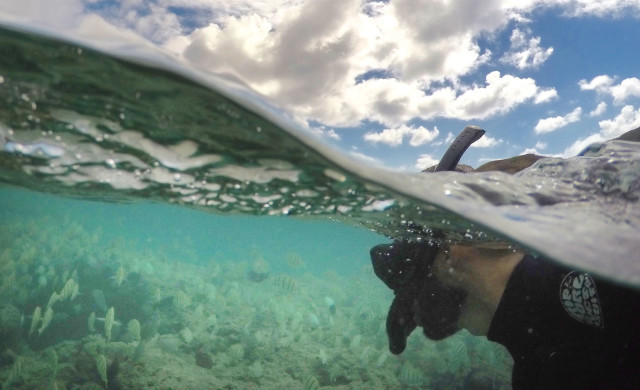 Snorkeling In Hawaii Is A Leading Cause Of Tourist Deaths