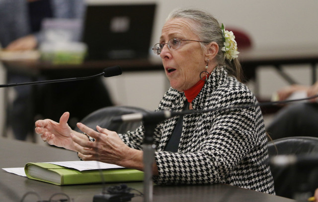 Kat Brady gestures talking about Environmental Assessments Prisons.