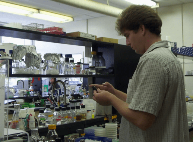 A University of Hawaii biology student works in a lab on the Manoa campus.