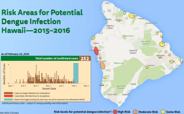 The current dengue fever outbreak began in October.