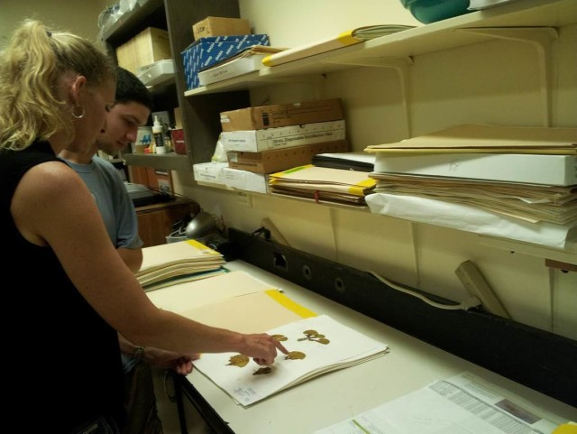 Heather Spalding examines a limu specimen at the University of Hawaii at Manoa.