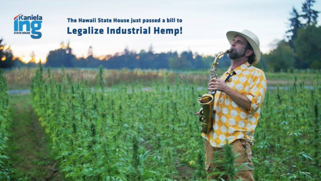 Rep. Kaniela Ing celebrated his industrial hemp bill clearing the House on Friday in a Facebook post that included this image.