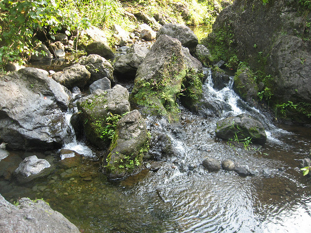 Freshwater resources in Maui are of particular concern to the farmers union with regard to HB2501.