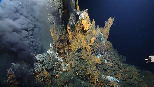 Hydrothermal vents, created when magma rises through the earth's crust to the ocean floor, give rise to life forms seen nowhere else on Earth.