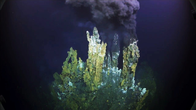 This hydrothermal vent was photographed by Schmidt Ocean Institute researchers in a deep-water basin off the island of Tonga, in the southern Pacific Ocean.