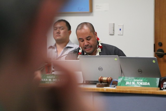 "Sen. Donovan Dela Cruz unveiled his ""creative solution"" to help save Wahiawa General Hospital, Tuesday, during the Ways and Means Committee budget hearing. The plan involves buying the hospitals parking lots and leasing them back at a nominal charge."