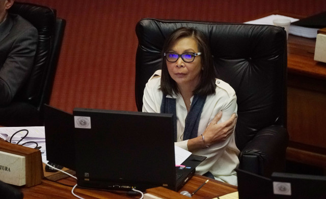 Rep Joy San Buenventura floor session House. 12 april 2016.