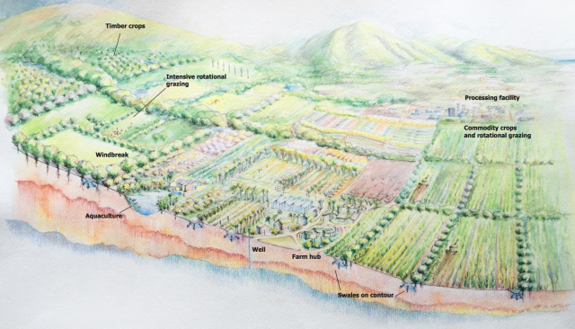 "This artist's rendering in a report called ""Maui's Farming Future,"" released Monday, shows what regenerative agriculture could look like."