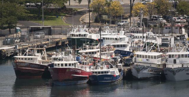 Port of Honolulu fishing boats1. 23 may 2016.