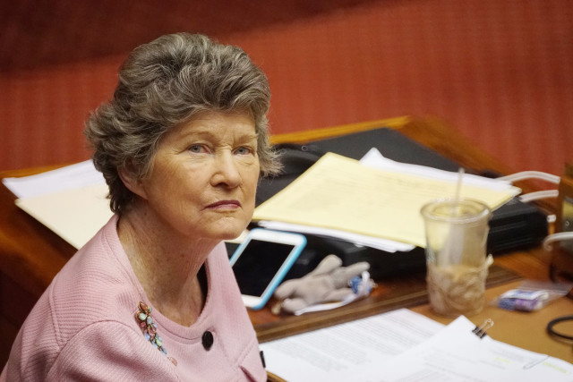 Rep Cynthia Thielen during floor session. 3 may 2016.