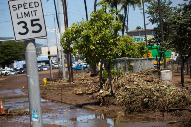 Debris piled up along Kamehameha Highway after Tropical Storm Darby.