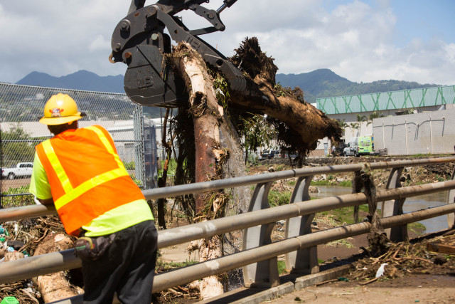 Crews lift entire trees out of Kalihi Stream after Tropical Storm Darby.