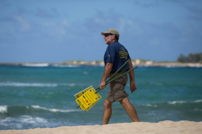 Jon Gelman, president of the Hawaii Marine Mammal Alliance, places caution signs around a sleeping monk seal on the North Shore.