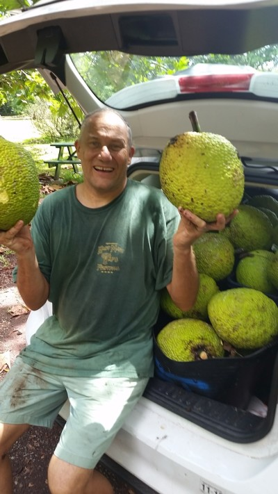 John Cadman shows off some some health-looking breadfruit.