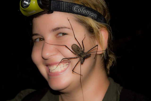 Christie Wilcox gets up close and personal with an amblypygi whip spider.