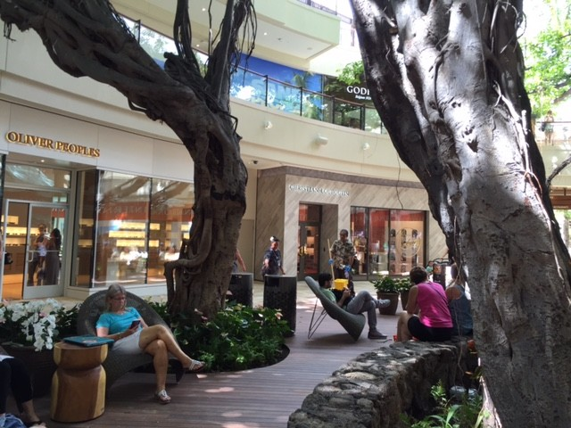 Roots of the big Indian banyan now make a relaxing sitting area on the ground floor of the revamped market place.