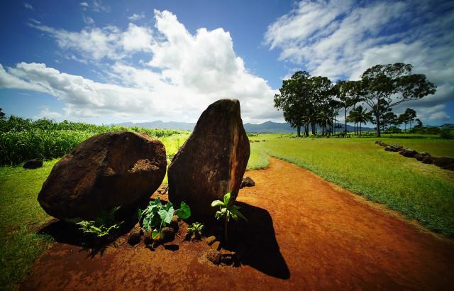 Kukaniloko Birthing Stones entrance, birthplace of Hawaiian royalty located in Wahiawa. 20 sept 2016