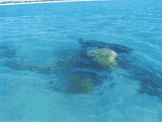 An excavator that was being used to remove toxic soil from Kure Atoll is submerged off the remote island's coast.
