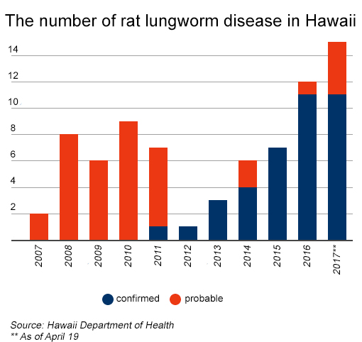 rat lungworm disease
